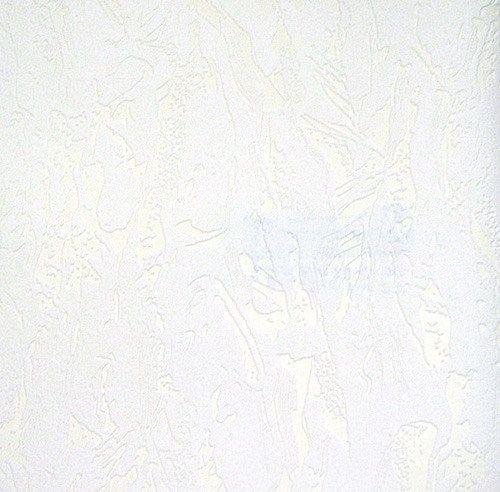 Обои под окраску флизелиновые Ланита 1,06*25м от Ravta