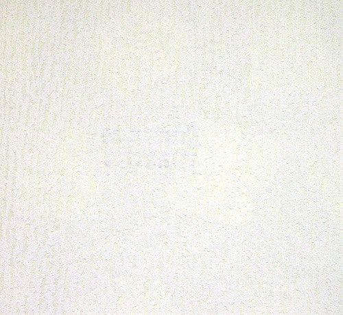 Обои под окраску флизелиновые Ланита Короед 1,06*25м от Ravta