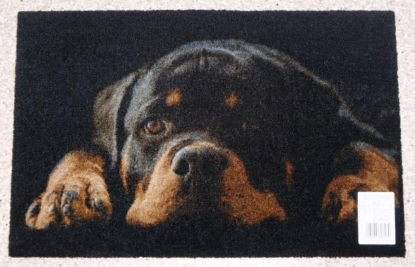 Коврик Carpets Inter придверный Deco-Up Ротвейлер 500*750мм от Ravta