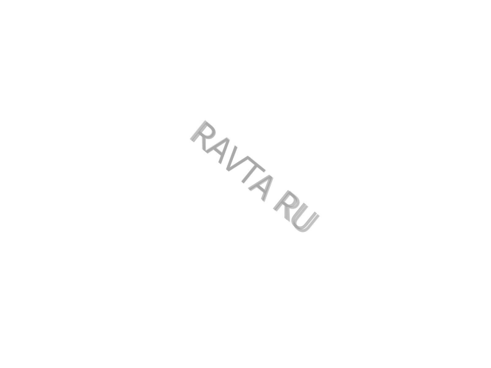Смазка Shell Gadus S2 V220 AD2 (18кг) от Ravta