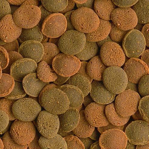 tetra Корм основной с креветкой для плотоядных, травоядныхдонных рыб Tetra Wafer Mix таблетки 3,6л 193826