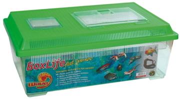 croci Акватеррариум с крышкой Wave BoxLife, 45*30*17,5 см, пластик A2005665