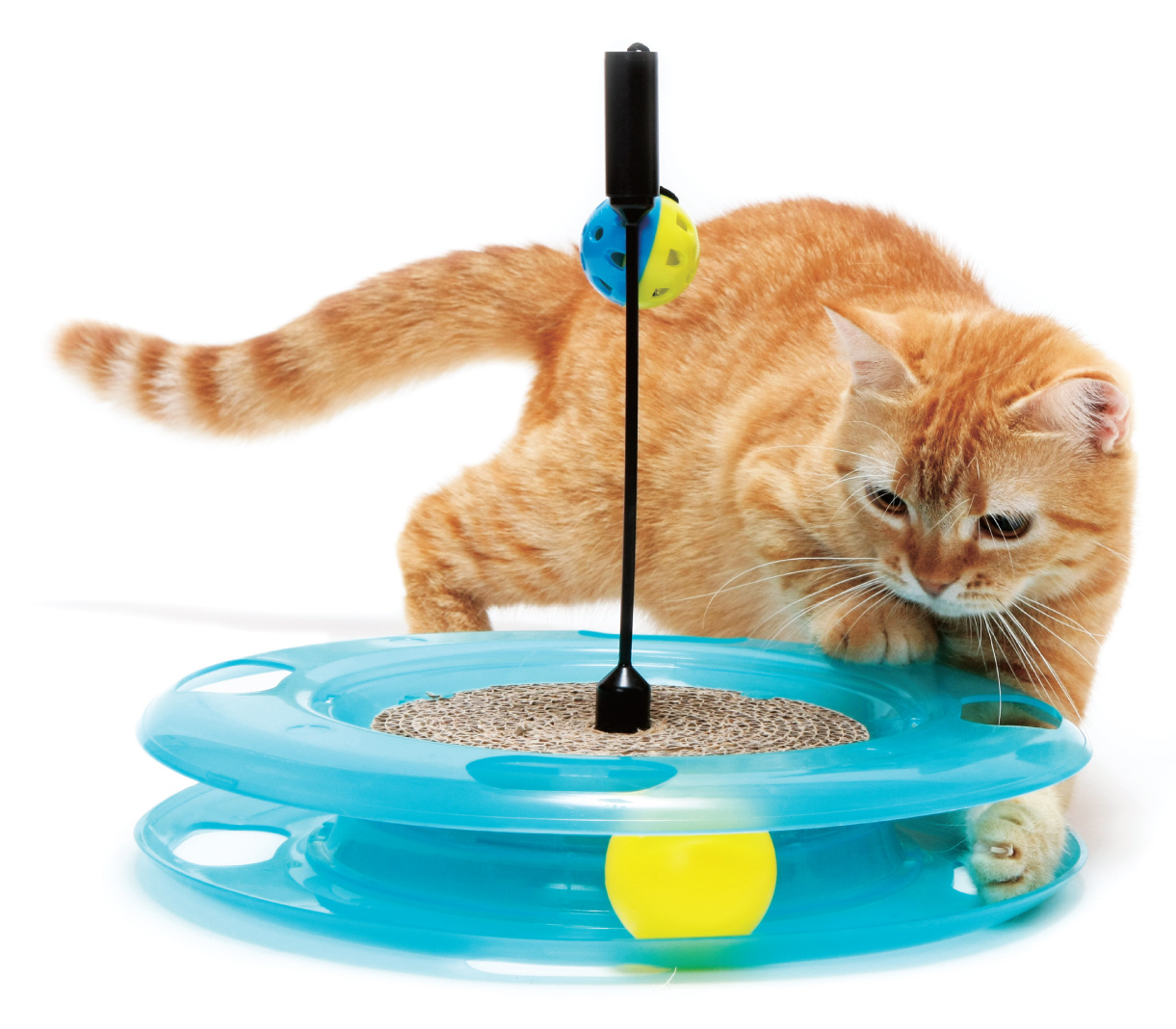Veterinarian recommended cat toys